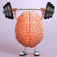 Exam Workout