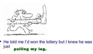 to pull my leg