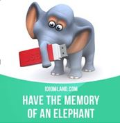 To have a memory of an elephant