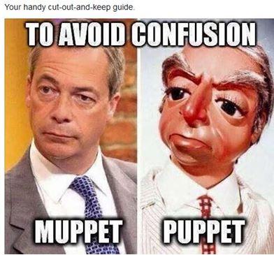 Muppet Puppet